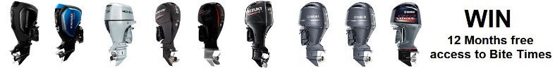 150hp Outboards